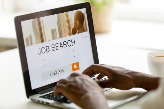 Online Job Search